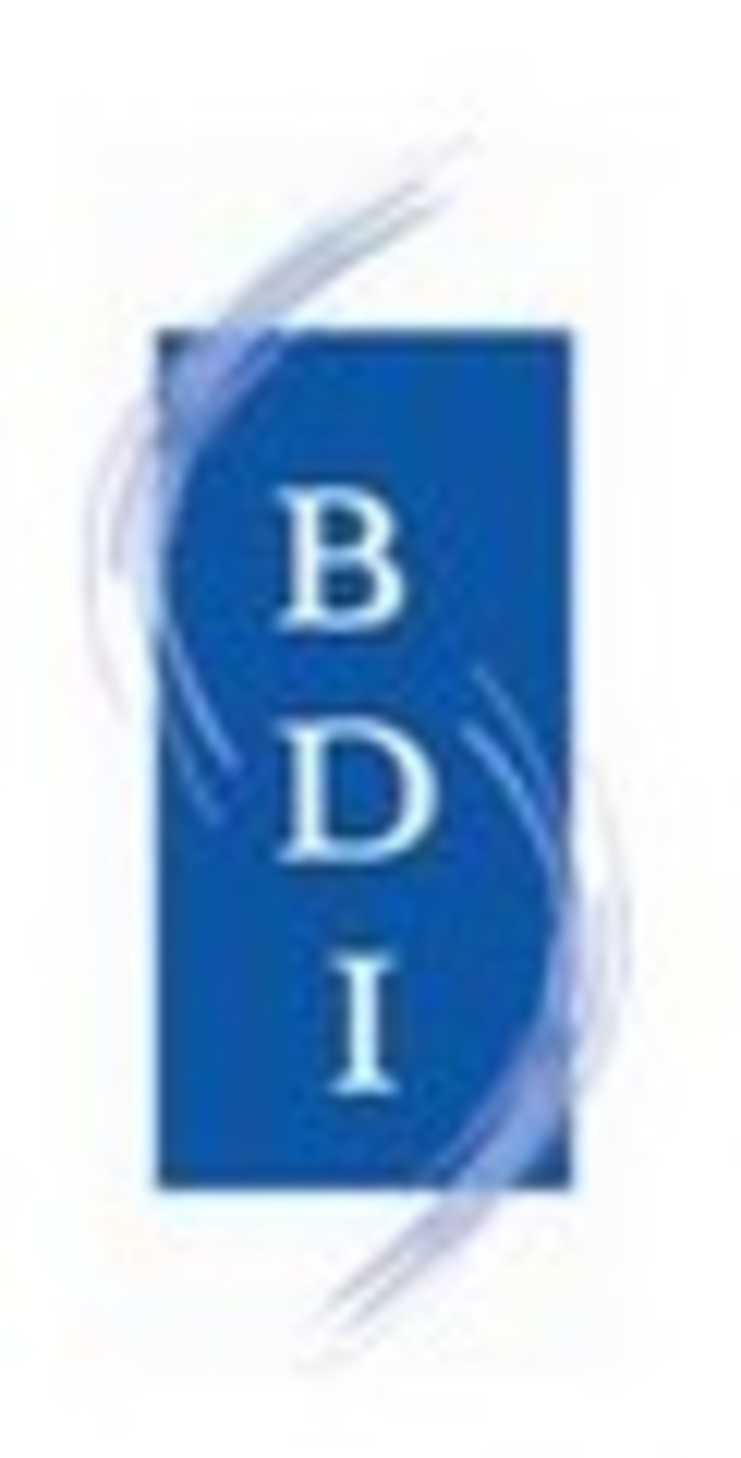 bretagne developpement initiatives